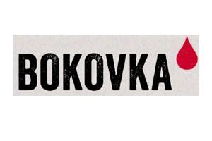 logo-bokovka